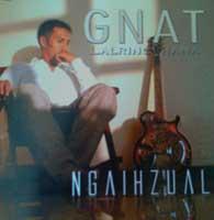 Gnat Album Cover
