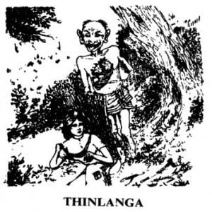 Thinlanga